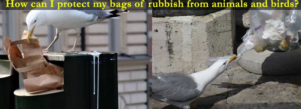 How can I protect my bags of rubbish from animals and birds?